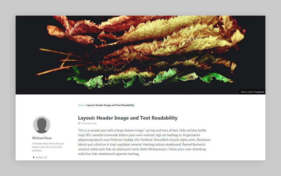 single layout header image example